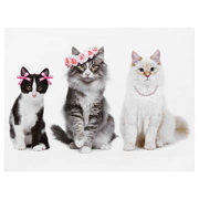 Pretty Cats Printed Canvas - $17.49 ($7.50 Off)